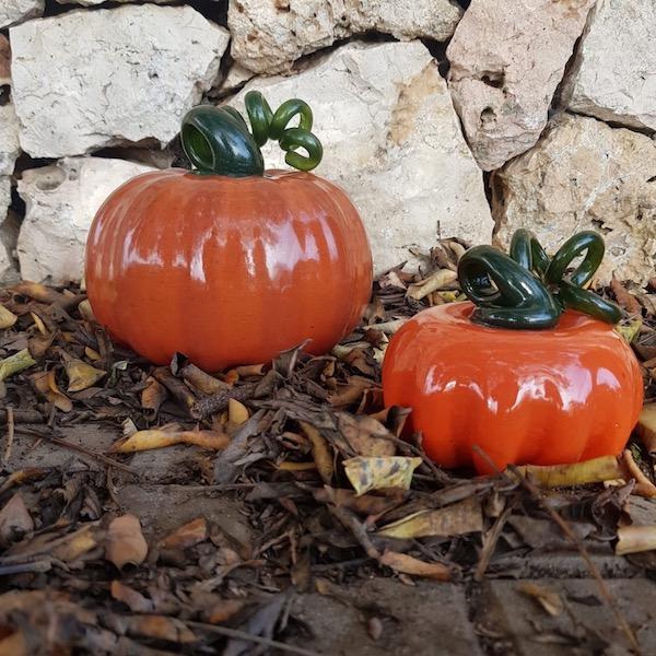 carabasses lafiore - Pumpkin